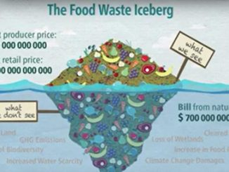 Be a Zero Hunger Hero: Don't waste food