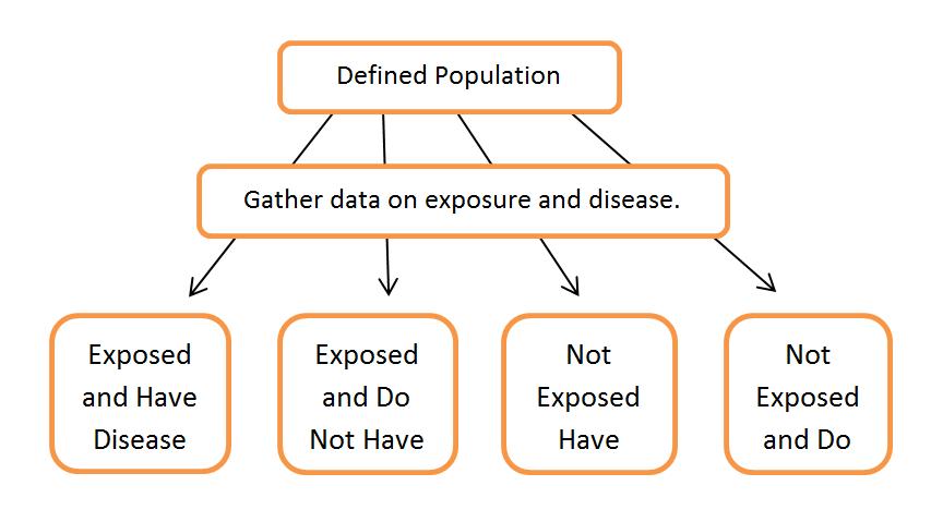 cross sectional data